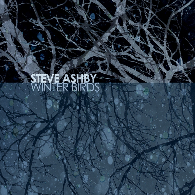 Steve Ashby Winter Birds 800